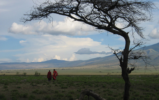 two people in a field, a tree in the foreground, mountains in background